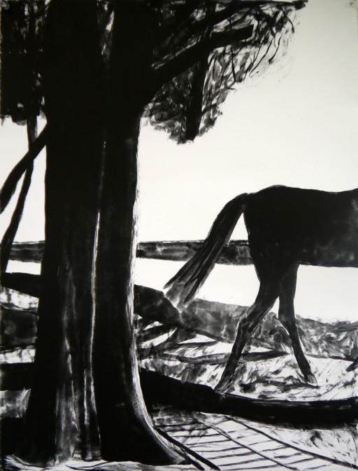cavalier-perdu-serie-lumiere-noire