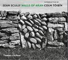 SEAN SCULLY.  WALLS OF ARAN