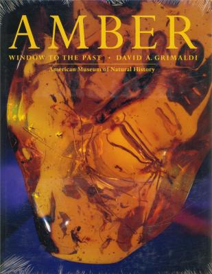 amber-window-to-the-past-