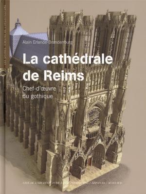 la-cathedrale-de-reims-dvd-chef-d-oeuvre-du-gothique