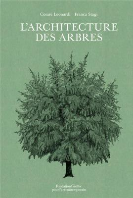 l-architecture-des-arbres