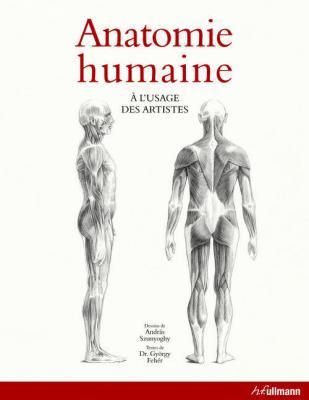 anatomie-humaine-À-l-usage-des-artistes