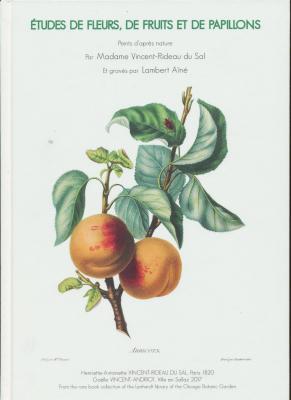 Etudes-de-fleurs-de-fruits-et-de-papillons-peints-d-aprEs-nature-par-madame-vincent-rideau-du-sal